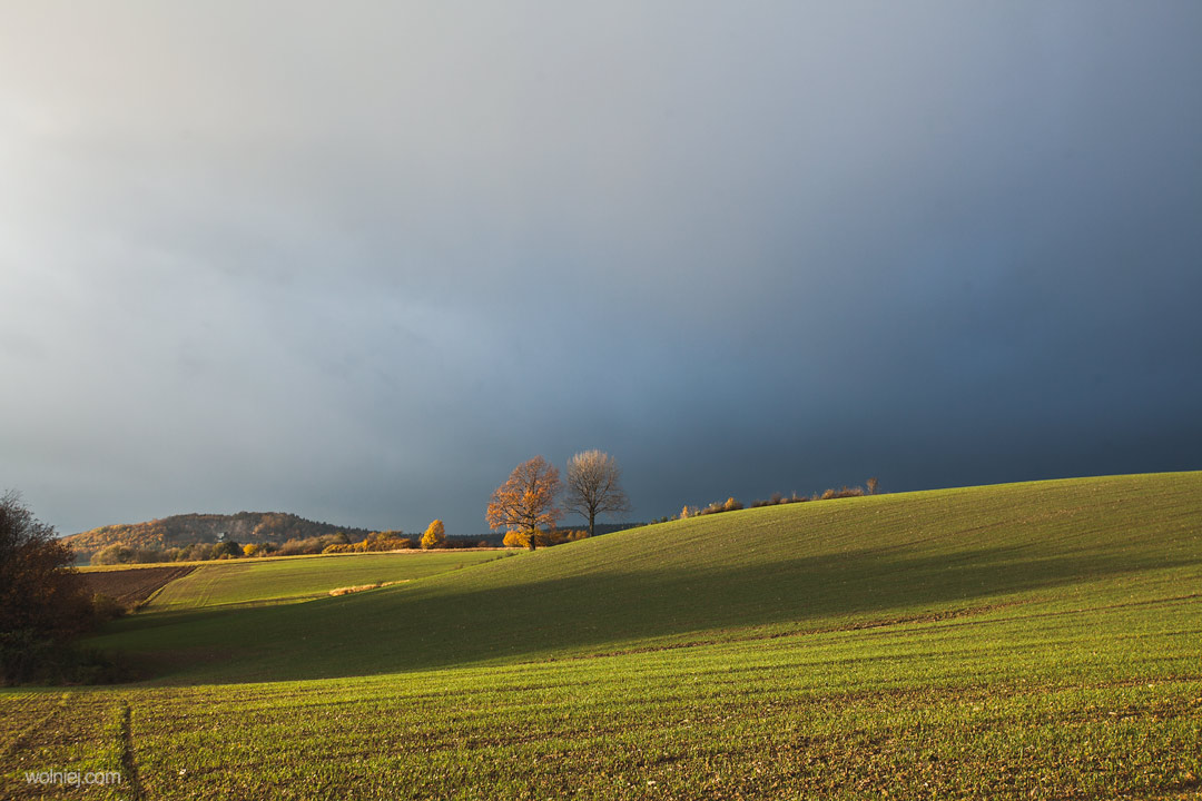 Widok na pole przy drodze prowadzącej do Radiostacji Rudiger 2