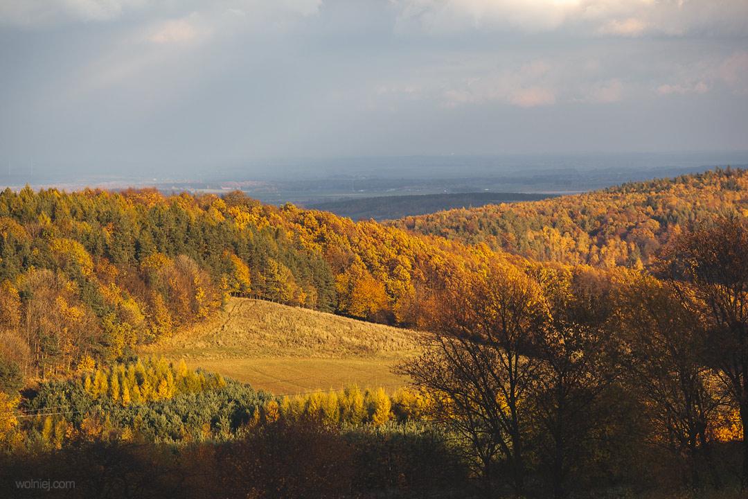 Widok ze wzgórza Rosocha gdzie znajduje się Radiostacja Rudiger