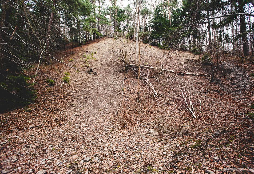 Profil cechsztynu. Ścieżka przyrodniczo dydaktyczna w Leszczynie. Skanen górniczo-hutniczy w Lesczynie