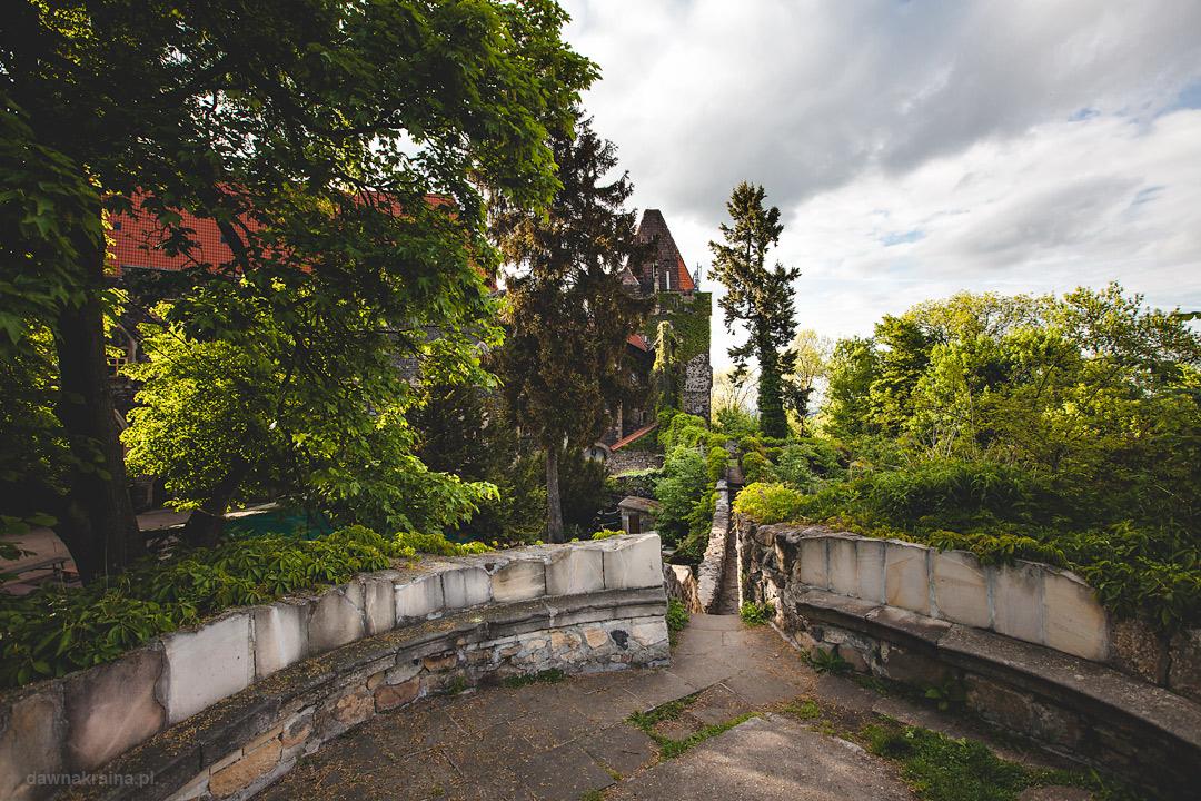 Na murach Zamku Grodziec. Widok na dziedziniec latem.
