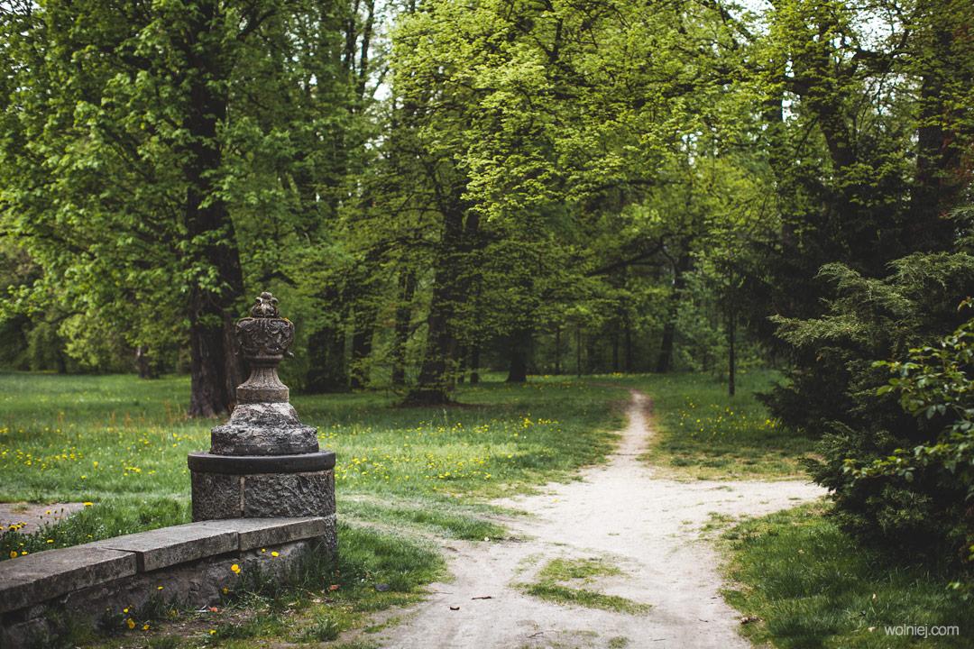 Park wokół Pałacu Targoszyn