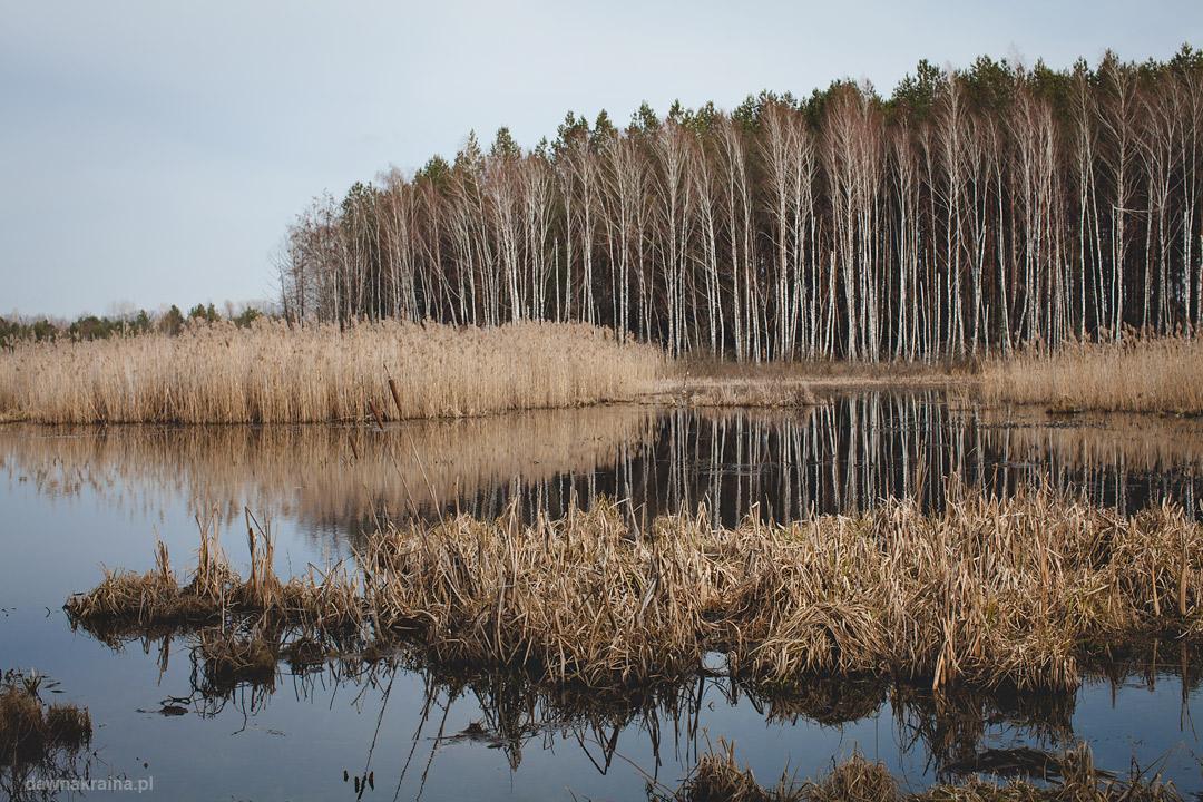 Okolica obozu Szmaragd i widok na jezioro