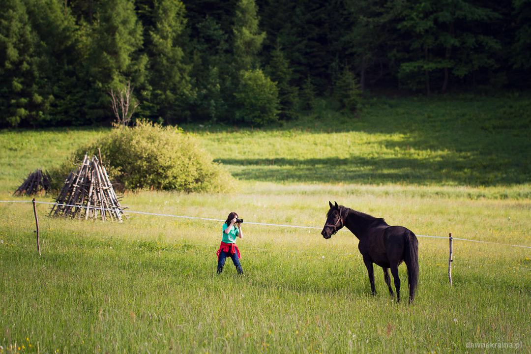 plener-fotograficzny-stadnina-koni-tara-20