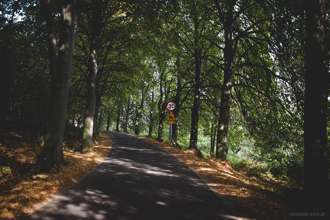 Droga na Zamek Grodziec