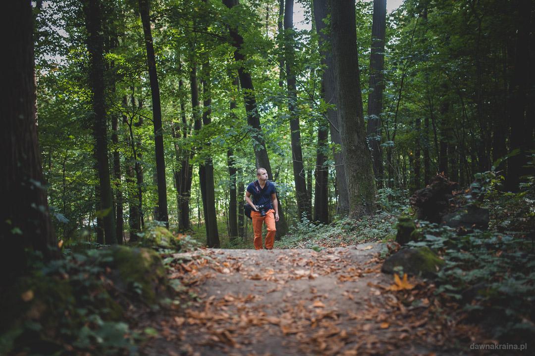 Stara ścieżka przez las prowadząca na Zamek Grodziec