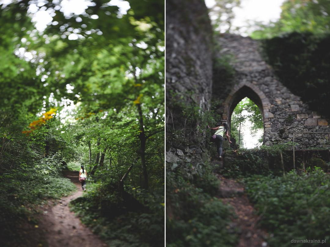 Leśna ścieżka na Zamek Grodziec z finałem na podzamczu