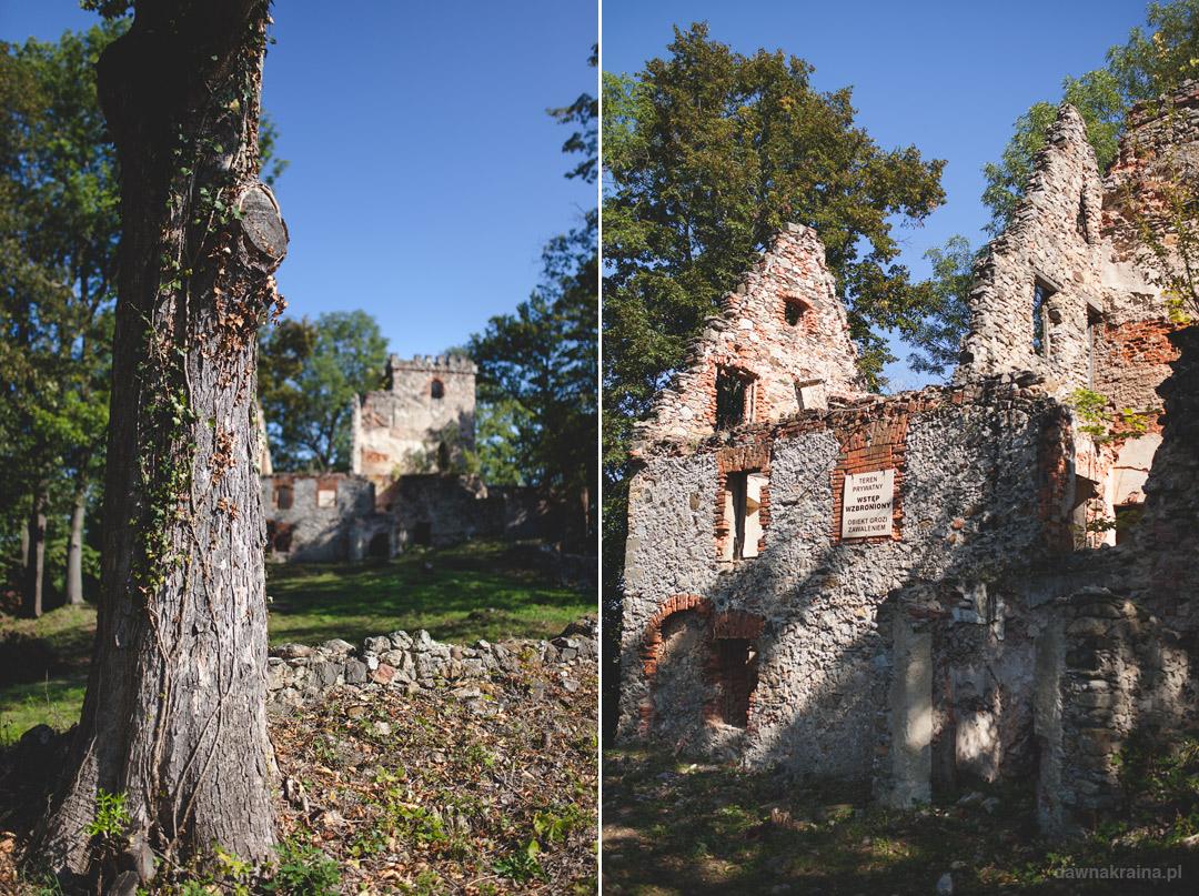 Ruiny zameku w Lipie