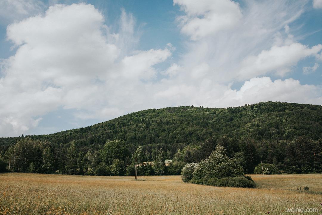 Widok na górę Jaworze, na której znajduje się wieża widokowa