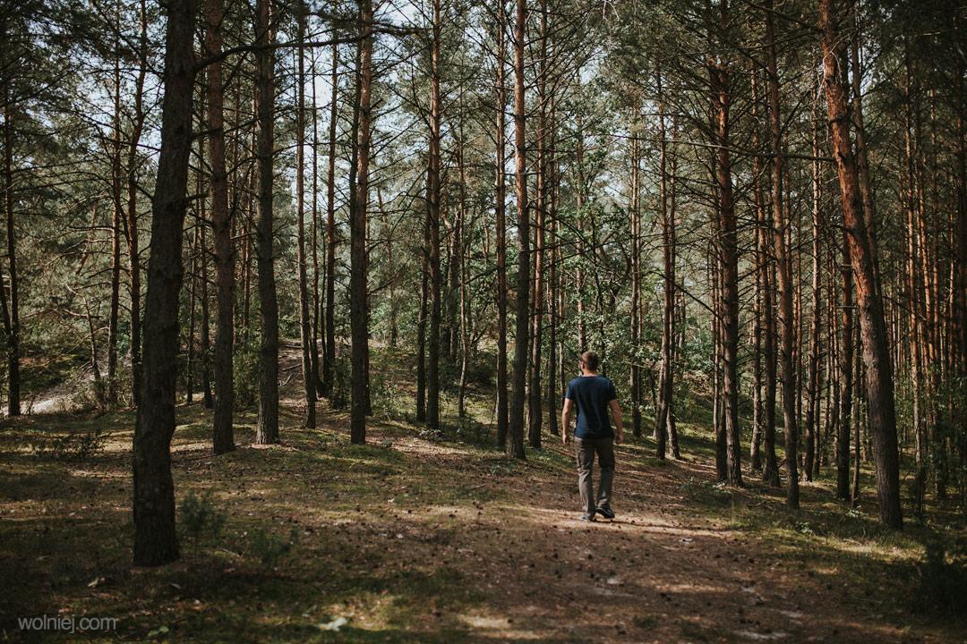 Las otaczający Wydmy Kotliny Chodelskiej