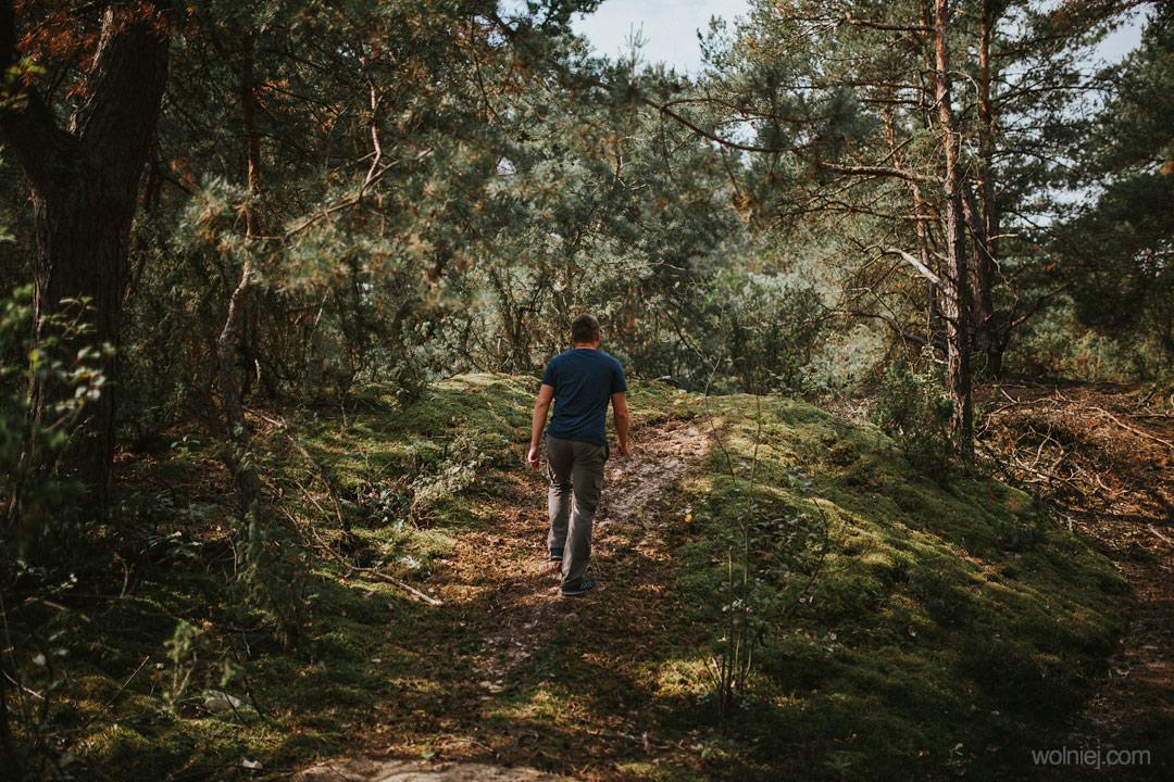 ścieżka prowadząca przez Wydmy Kotliny Chodelskiej