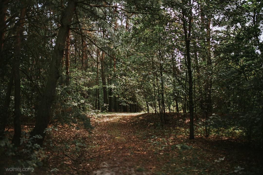 Ścieżka w Grodzisku w Chodliku