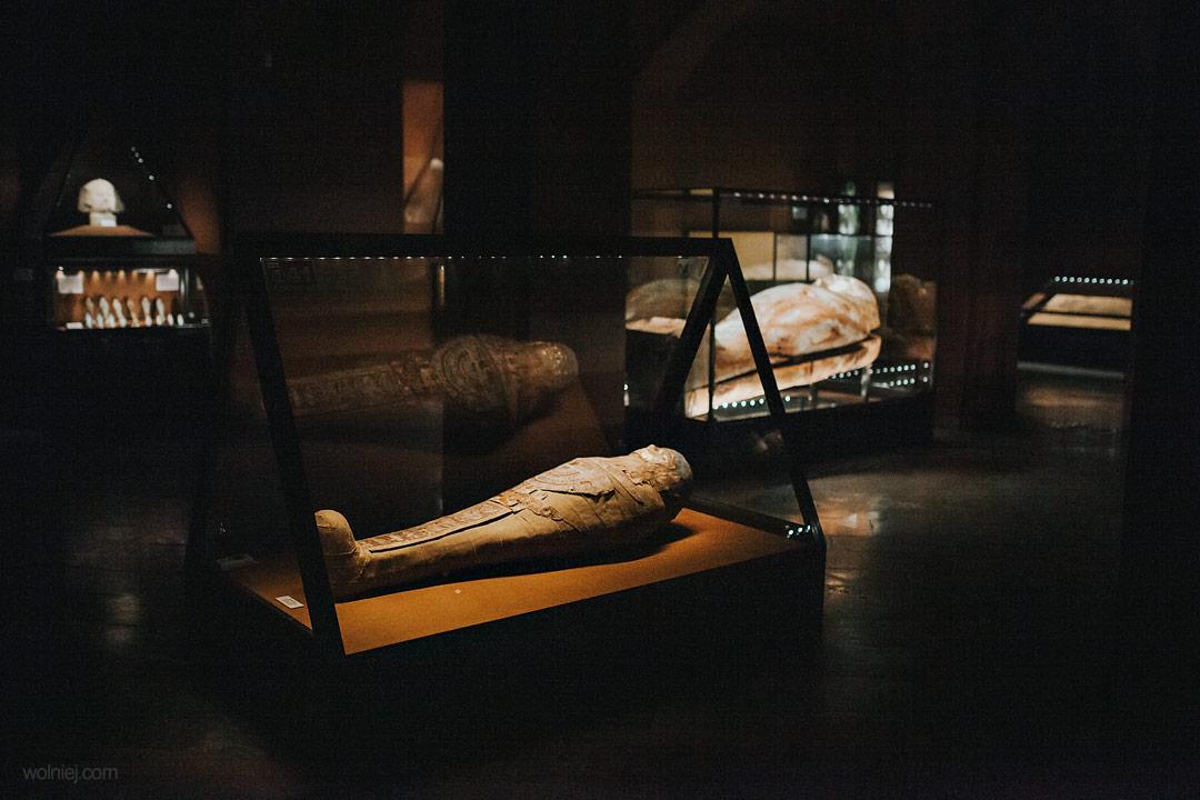 Mumie w Muzeum Archeologicznym w Krakowie
